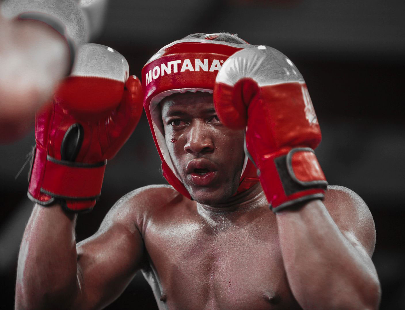 Boxe-boxetha-sport-mouvement-action